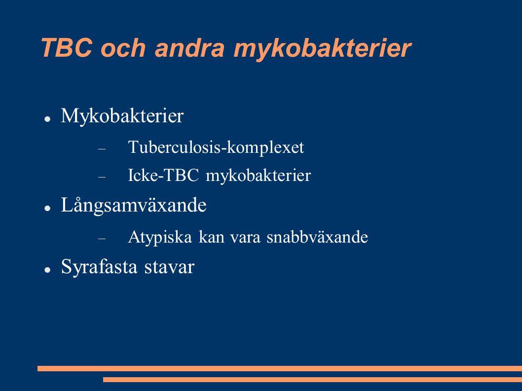 TBC och andra mykobakterier Mykobakterier  Tuberculosis-komplexet  Icke-TBC mykobakterier Långsamväxande  Atypiska kan vara snabbväxande Syrafasta
