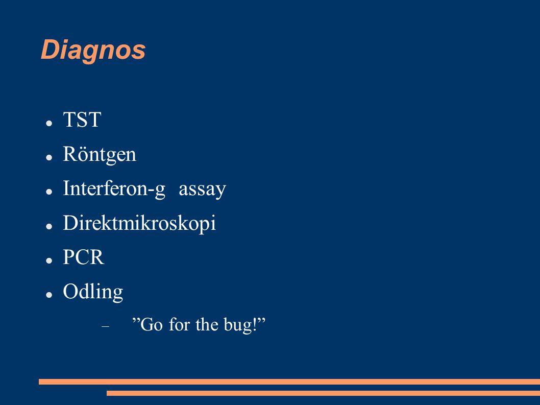 "Diagnos TST Röntgen Interferon-g assay Direktmikroskopi PCR Odling  ""Go for the bug!"""