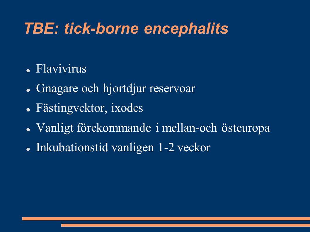 TBE: tick-borne encephalits Flavivirus Gnagare och hjortdjur reservoar Fästingvektor, ixodes Vanligt förekommande i mellan-och östeuropa Inkubationsti