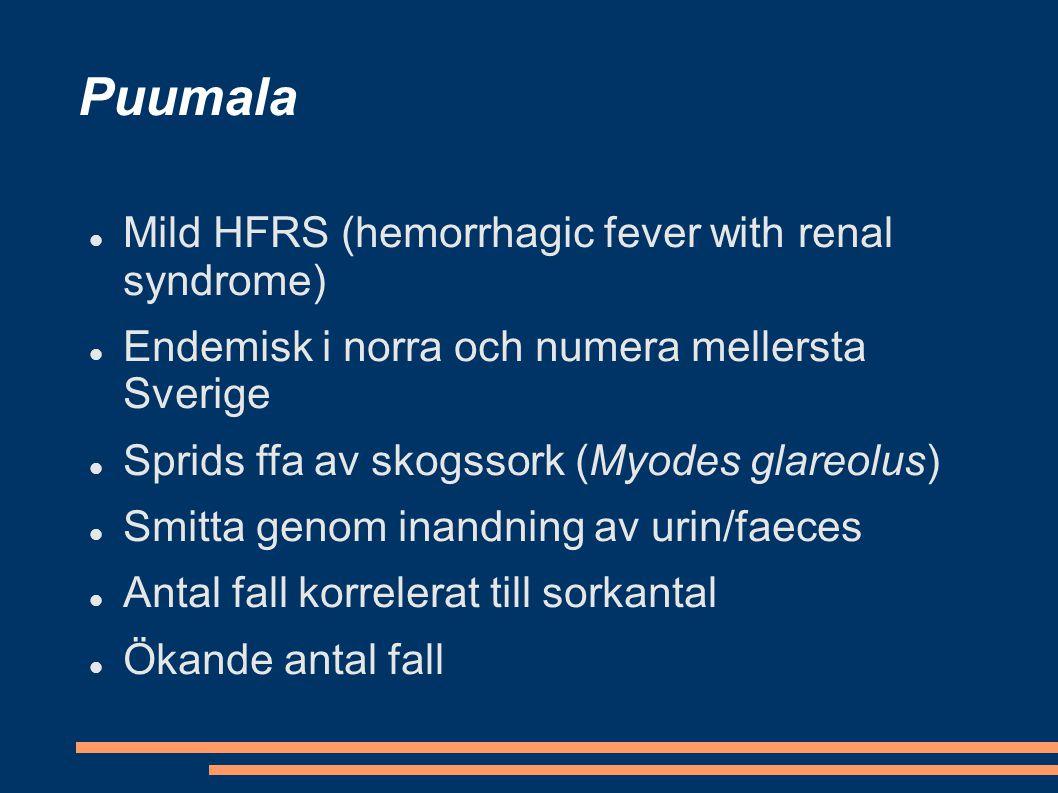 Puumala Mild HFRS (hemorrhagic fever with renal syndrome) Endemisk i norra och numera mellersta Sverige Sprids ffa av skogssork (Myodes glareolus) Smi