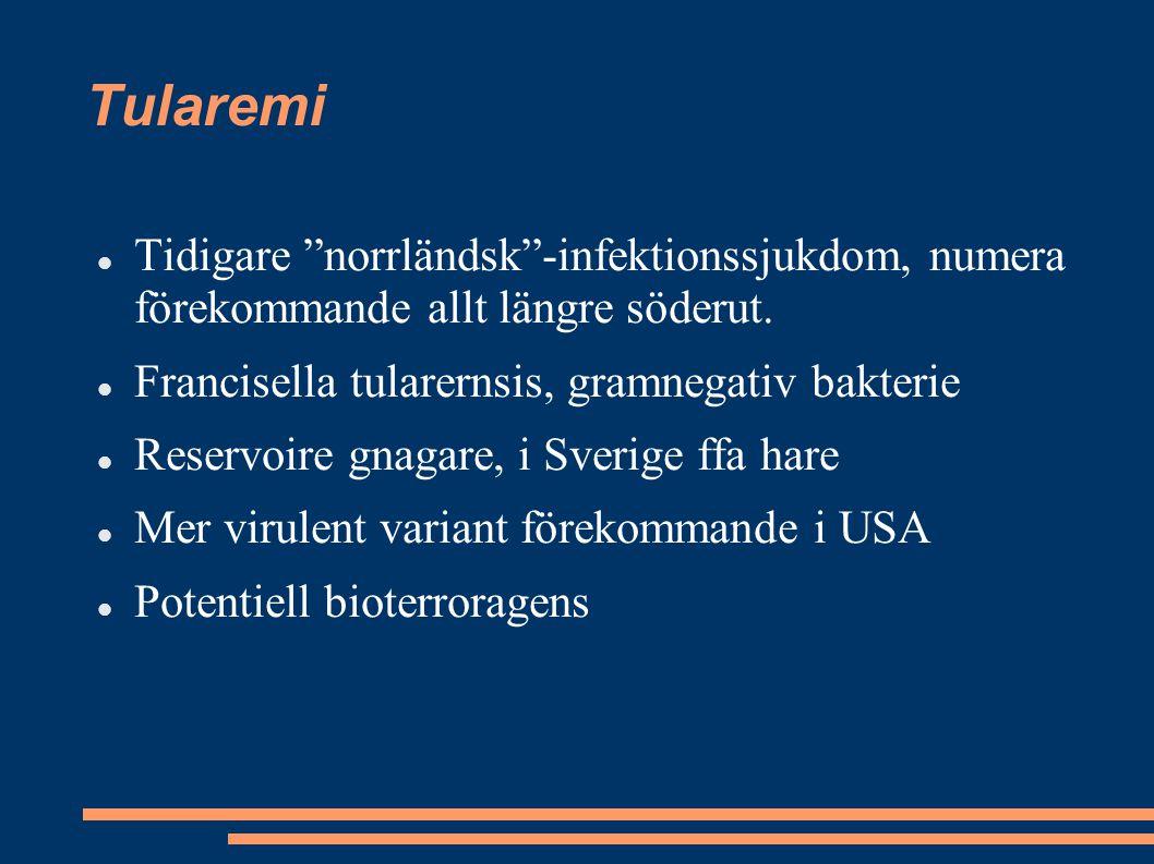"""Tularemi Tidigare """"norrländsk""""-infektionssjukdom, numera förekommande allt längre söderut. Francisella tularernsis, gramnegativ bakterie Reservoire gn"""