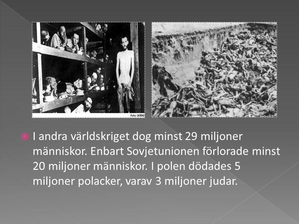  I andra världskriget dog minst 29 miljoner människor. Enbart Sovjetunionen förlorade minst 20 miljoner människor. I polen dödades 5 miljoner polacke
