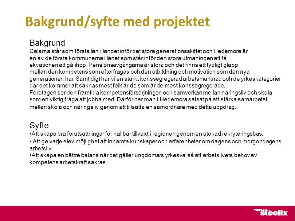 Bakgrund/syfte med projektet Bakgrund Dalarna står som första län i landet inför det stora generationsskiftet och Hedemora är en av de första kommunerna i länet som står inför den stora utmaningen att få ekvationen att gå ihop.