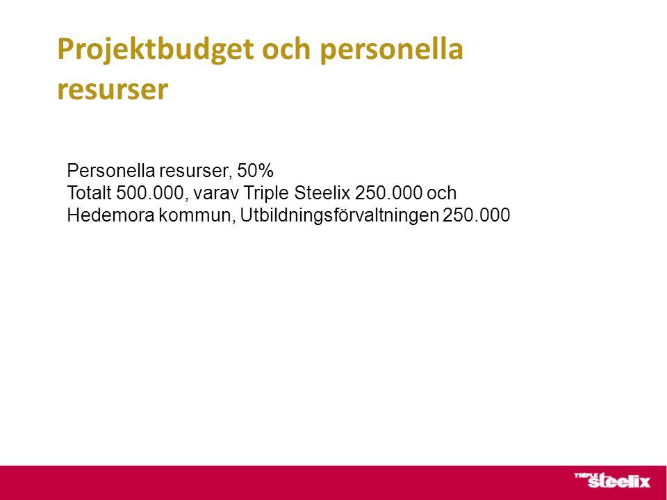 Projektbudget och personella resurser Personella resurser, 50% Totalt 500.000, varav Triple Steelix 250.000 och Hedemora kommun, Utbildningsförvaltningen 250.000