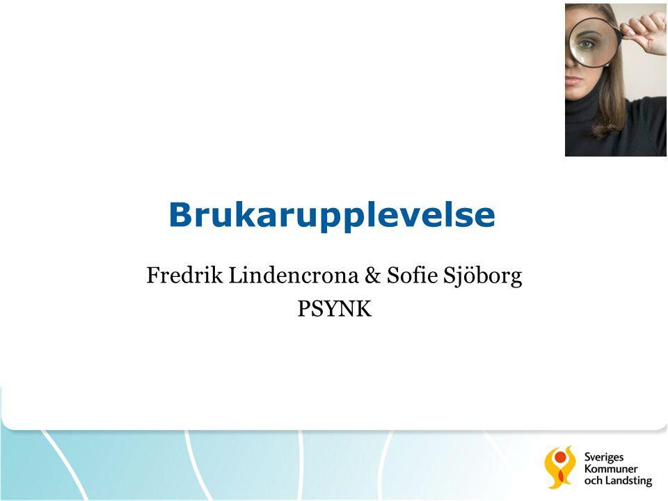 Brukarupplevelse Fredrik Lindencrona & Sofie Sjöborg PSYNK