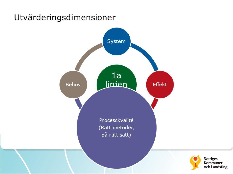 Utvärderingsdimensioner 1a linjen modell SystemEffekt Processkvalité (Rätt metoder, på rätt sätt) Behov