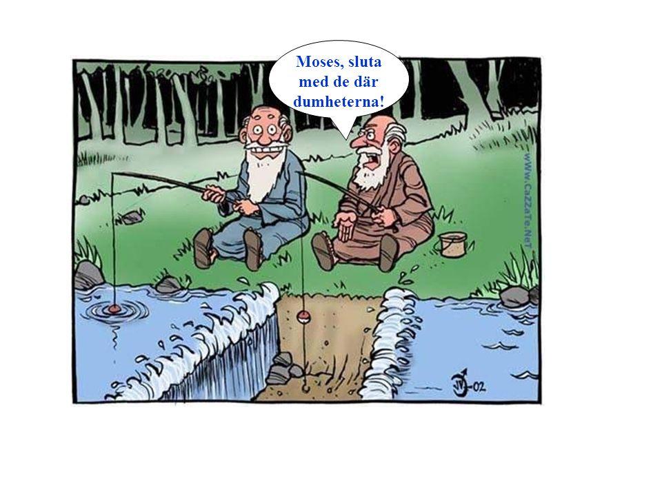 Moses, sluta med de där dumheterna!