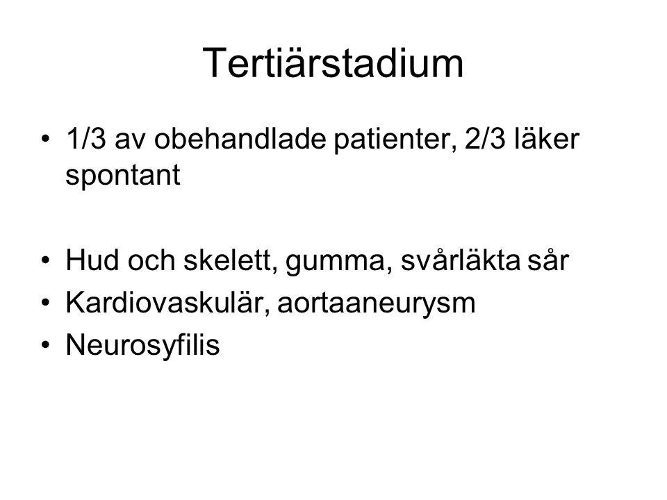 Tertiärstadium 1/3 av obehandlade patienter, 2/3 läker spontant Hud och skelett, gumma, svårläkta sår Kardiovaskulär, aortaaneurysm Neurosyfilis