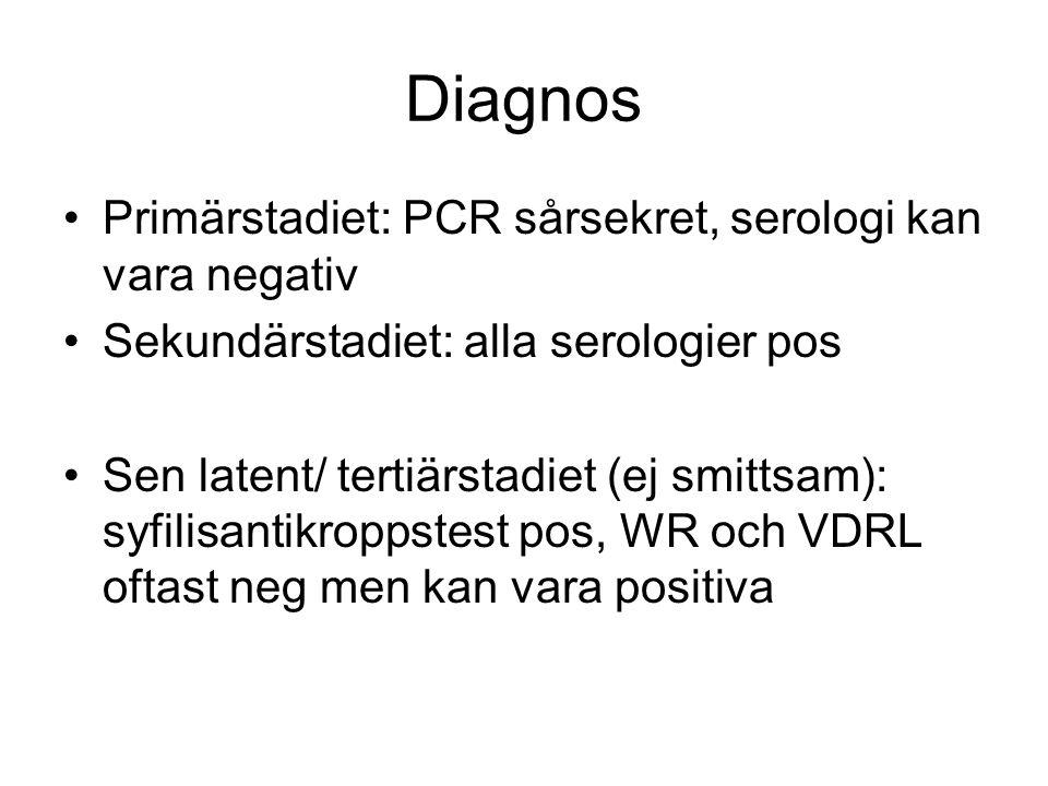 Diagnos Primärstadiet: PCR sårsekret, serologi kan vara negativ Sekundärstadiet: alla serologier pos Sen latent/ tertiärstadiet (ej smittsam): syfilis