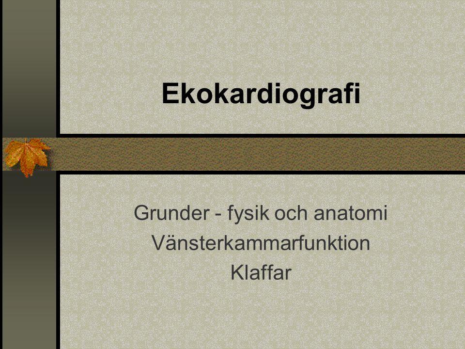Ekokardiografi Grunder - fysik och anatomi Vänsterkammarfunktion Klaffar