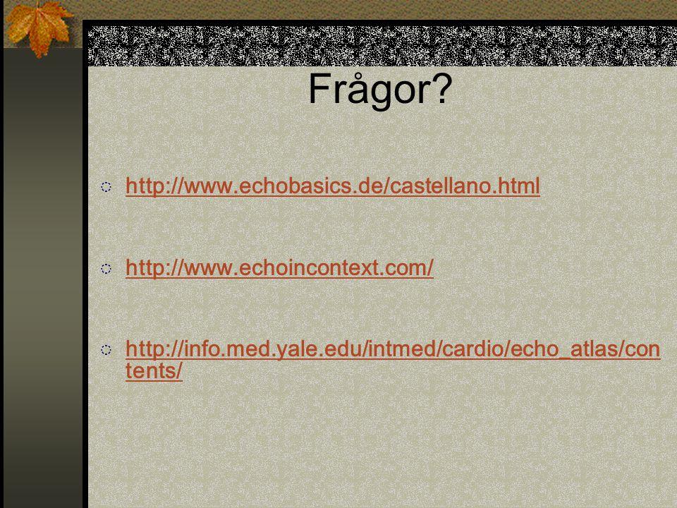 Frågor? ◌ http://www.echobasics.de/castellano.html http://www.echobasics.de/castellano.html ◌ http://www.echoincontext.com/ http://www.echoincontext.c