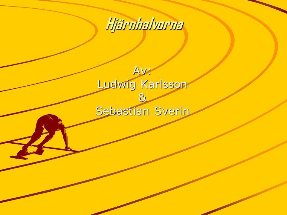 HjärnhalvornaAv: Ludwig Karlsson & Sebastian Sverin