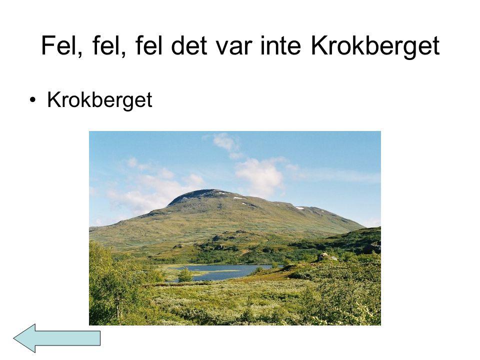 Fel, fel, fel det var inte Krokberget Krokberget
