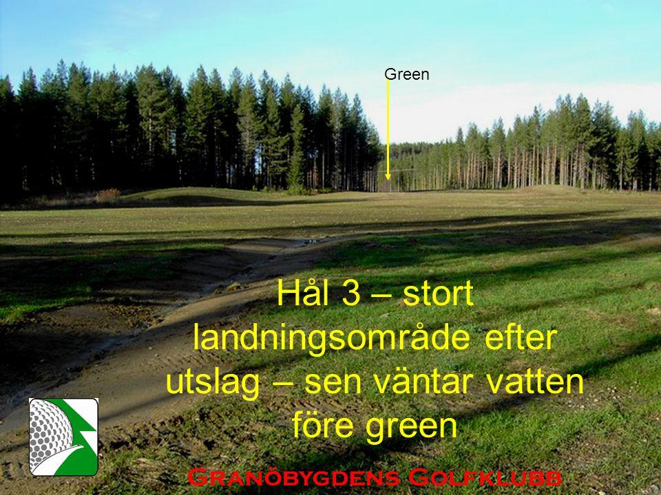 Hål 3 – stort landningsområde efter utslag – sen väntar vatten före green Granöbygdens Golfklubb Green