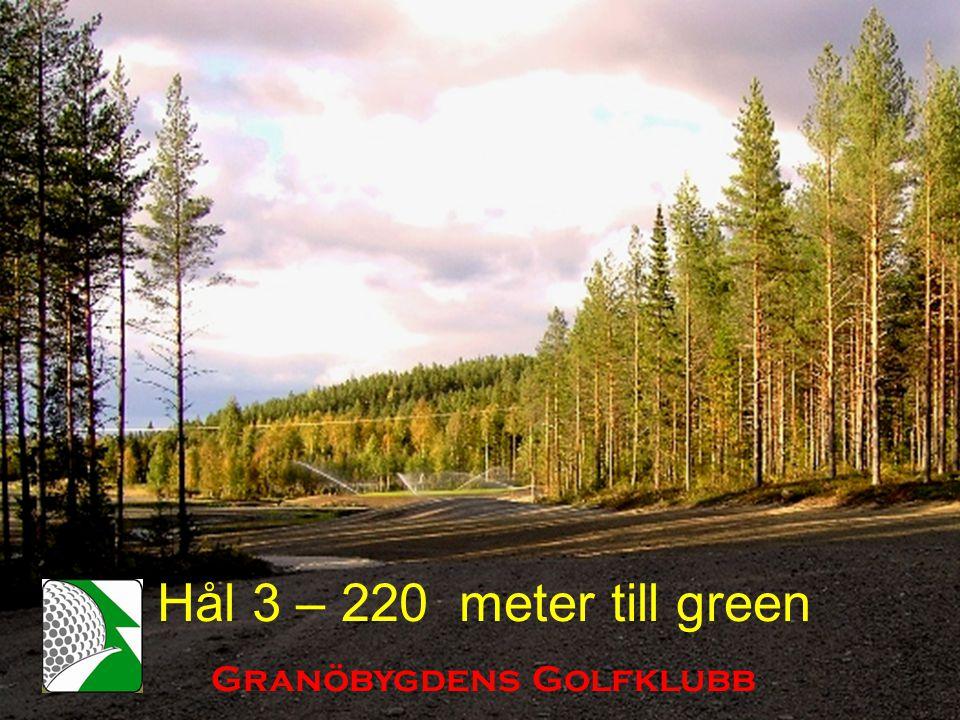 Hål 3 – 220 meter till green Granöbygdens Golfklubb