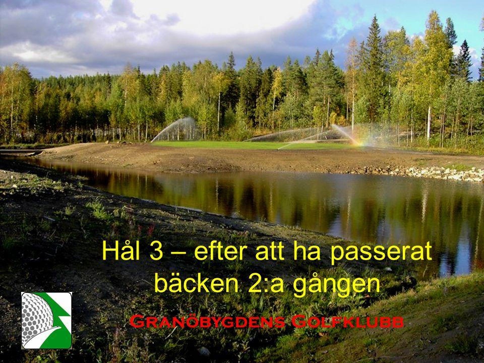 Hål 3 – efter att ha passerat bäcken 2:a gången Granöbygdens Golfklubb