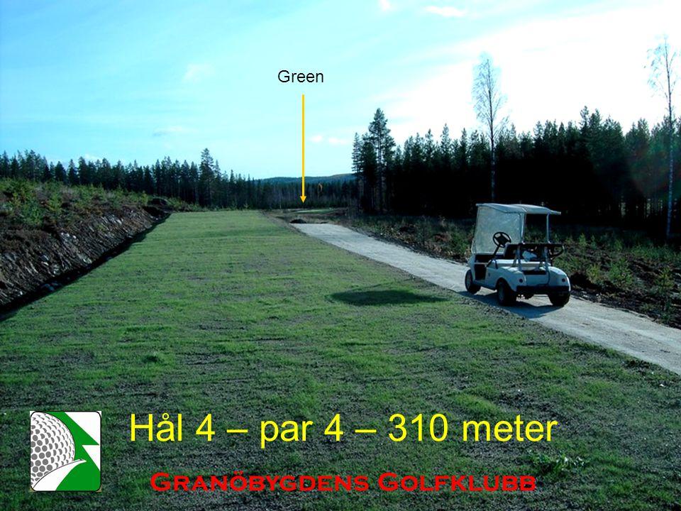 Hål 4 – par 4 – 310 meter Granöbygdens Golfklubb Green