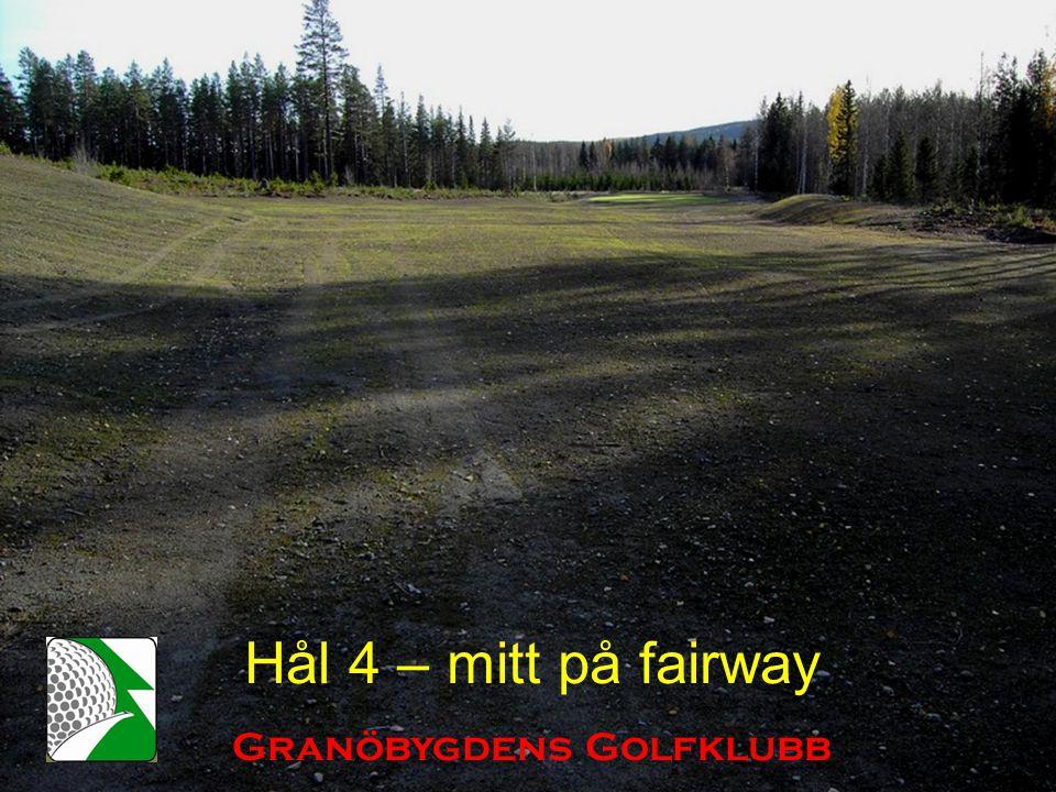 Hål 4 – mitt på fairway Granöbygdens Golfklubb