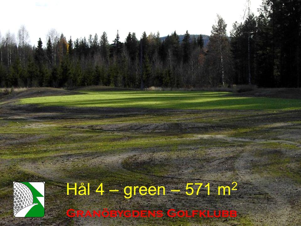 Hål 4 – green – 571 m 2 Granöbygdens Golfklubb