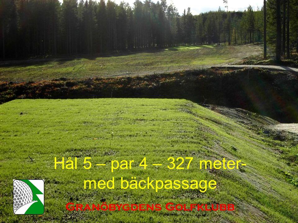 Hål 5 – par 4 – 327 meter- med bäckpassage Granöbygdens Golfklubb