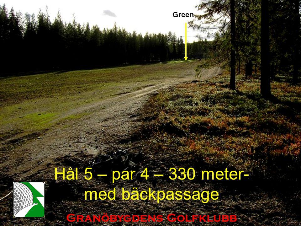 Hål 5 – par 4 – 330 meter- med bäckpassage Granöbygdens Golfklubb Green