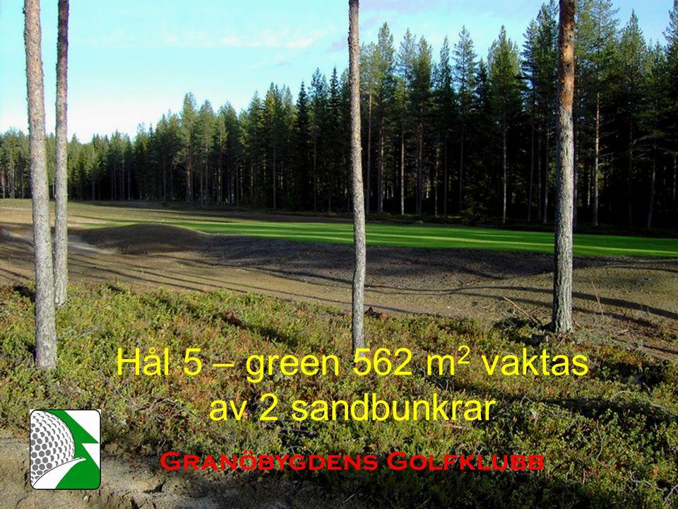 Hål 5 – green 562 m 2 vaktas av 2 sandbunkrar Granöbygdens Golfklubb