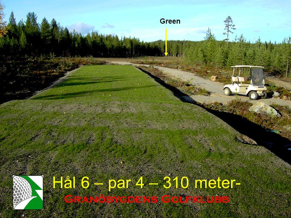 Hål 6 – par 4 – 310 meter- Granöbygdens Golfklubb Green