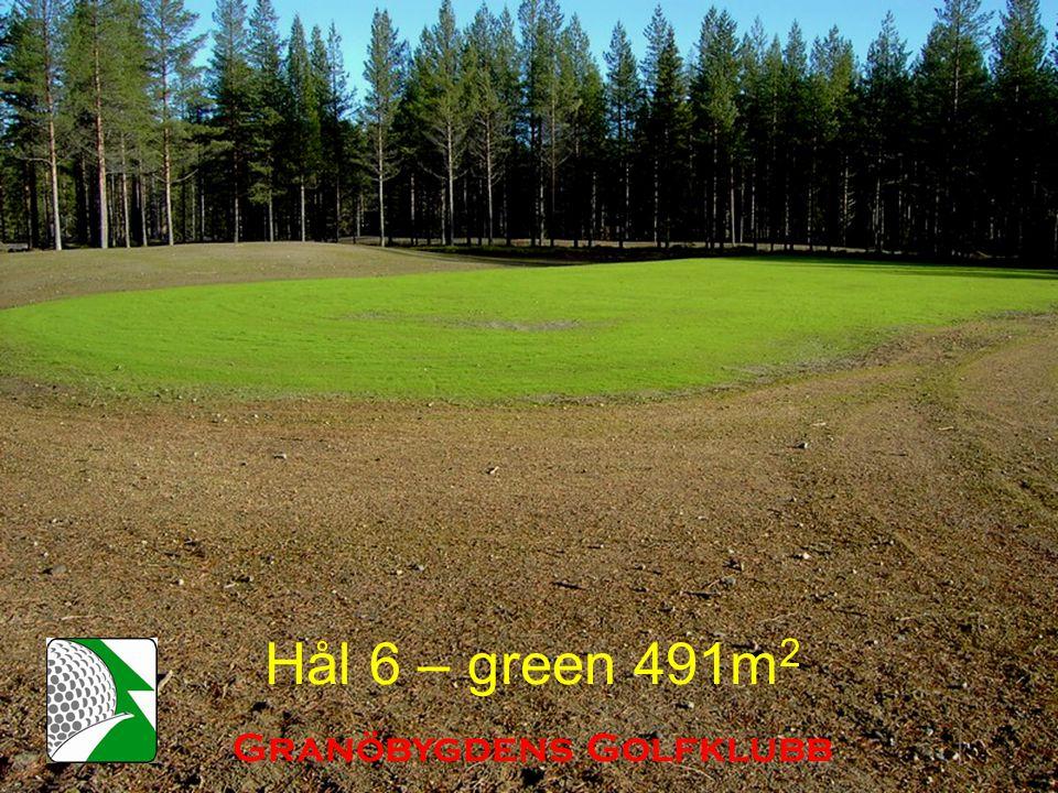 Hål 6 – green 491m 2 Granöbygdens Golfklubb