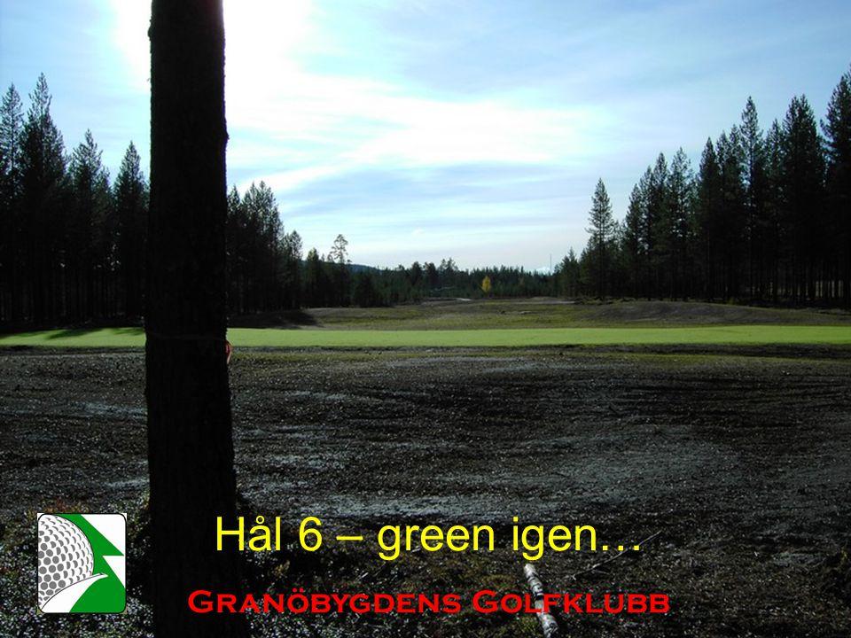 Hål 6 – green igen… Granöbygdens Golfklubb