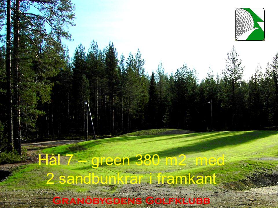 Hål 7 – green 380 m2 med 2 sandbunkrar i framkant Granöbygdens Golfklubb