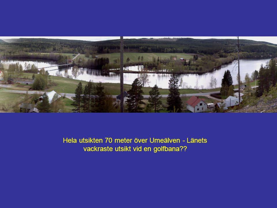 Hela utsikten 70 meter över Umeälven - Länets vackraste utsikt vid en golfbana