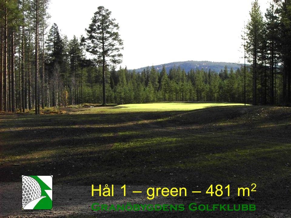 Hål 1 – green – 481 m 2 Granöbygdens Golfklubb