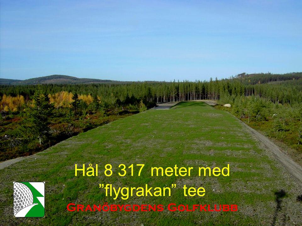 Hål 8 317 meter med flygrakan tee Granöbygdens Golfklubb