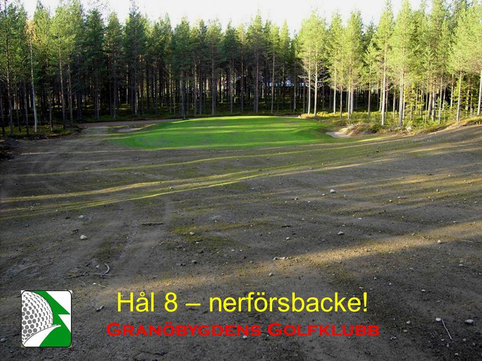 Hål 8 – nerförsbacke! Granöbygdens Golfklubb