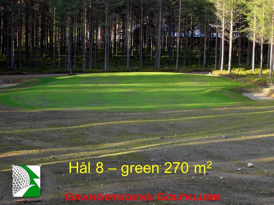 Hål 8 – green 270 m 2 Granöbygdens Golfklubb