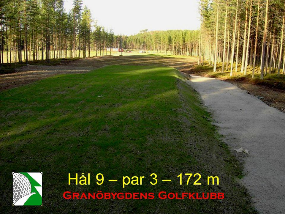 Hål 9 – par 3 – 172 m Granöbygdens Golfklubb