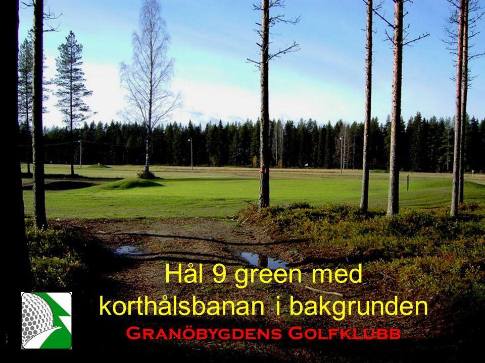 Hål 9 green med korthålsbanan i bakgrunden Granöbygdens Golfklubb