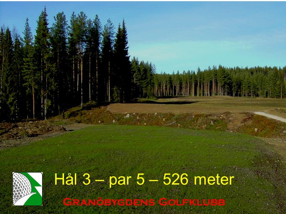 Hål 3 – par 5 – 526 meter Granöbygdens Golfklubb