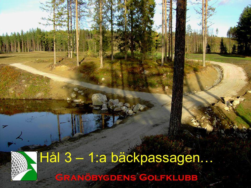 Hål 3 – 1:a bäckpassagen… Granöbygdens Golfklubb