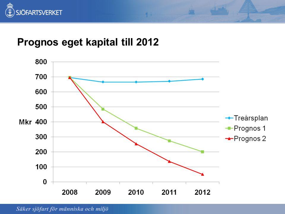 Prognos eget kapital till 2012