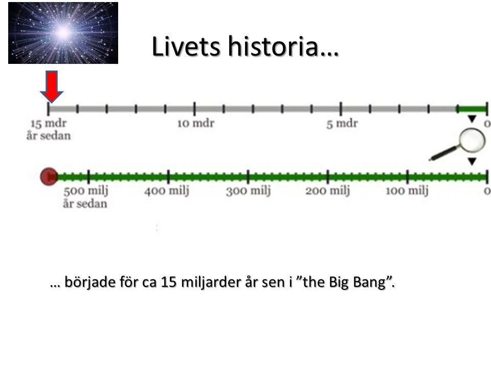 Livets historia Under ca 10 miljarder år bildades alla de grundämnen vi idag kan se.