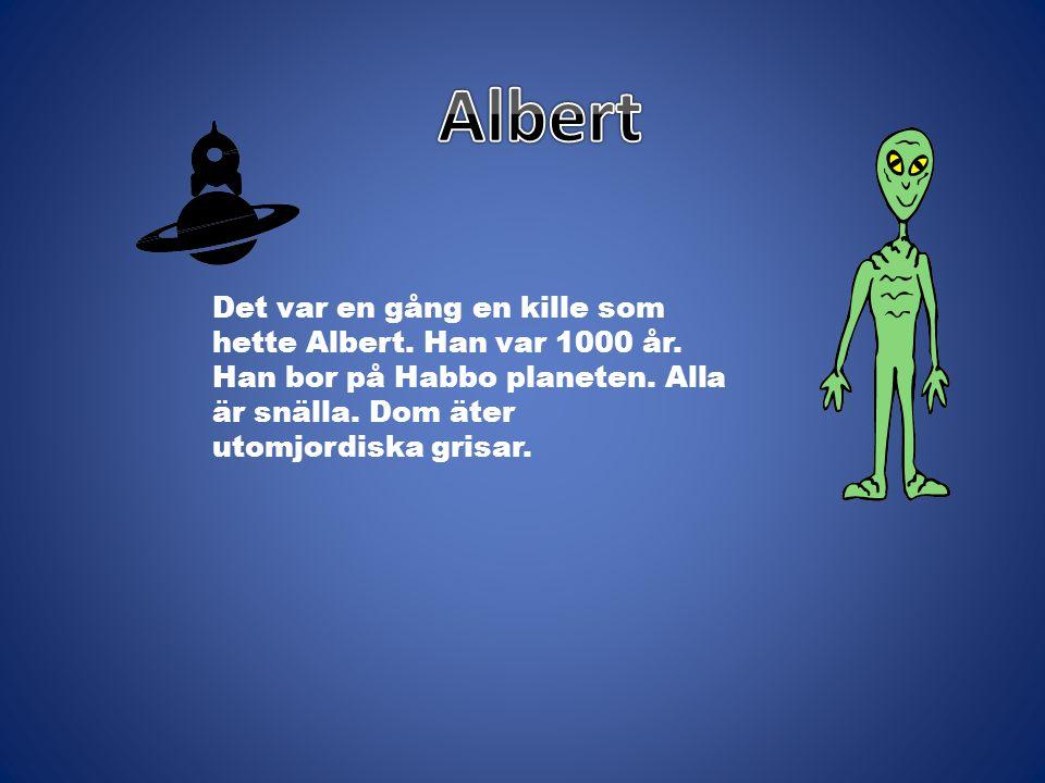 Det var en gång en kille som hette Albert. Han var 1000 år. Han bor på Habbo planeten. Alla är snälla. Dom äter utomjordiska grisar.