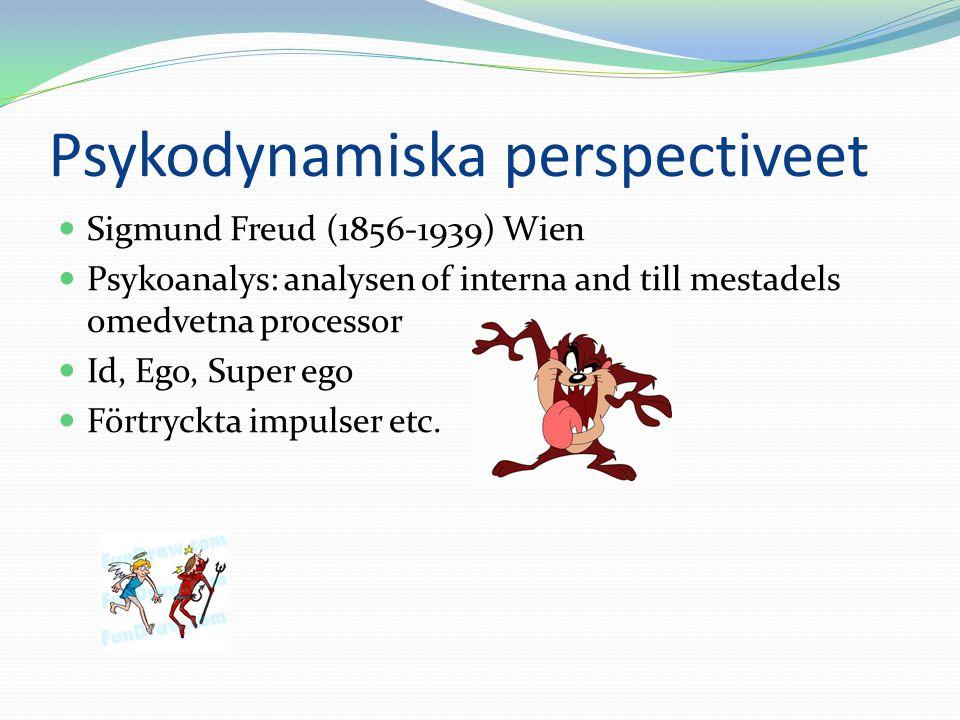 Psykodynamiska perspectiveet Sigmund Freud (1856-1939) Wien Psykoanalys: analysen of interna and till mestadels omedvetna processor Id, Ego, Super ego Förtryckta impulser etc.