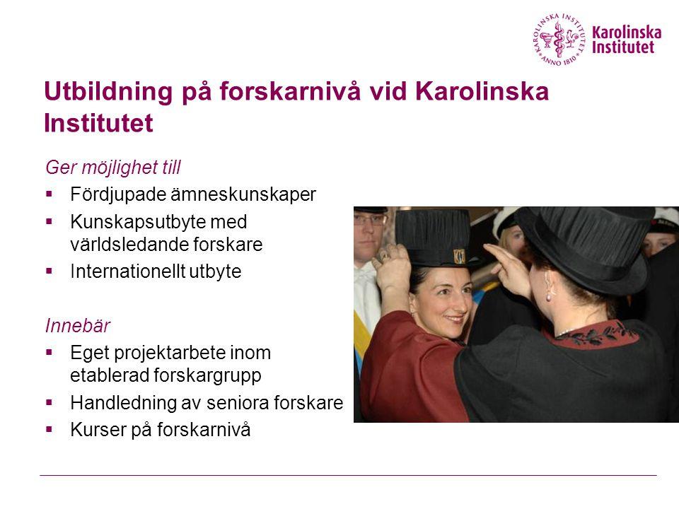 KIRT – Karolinska International Research and Training committee Forskning, utbildning på forskarnivå och internationellt samarbete rörande globala hälsoproblem  KIRT firade sitt 20-årsjubileum 2006.