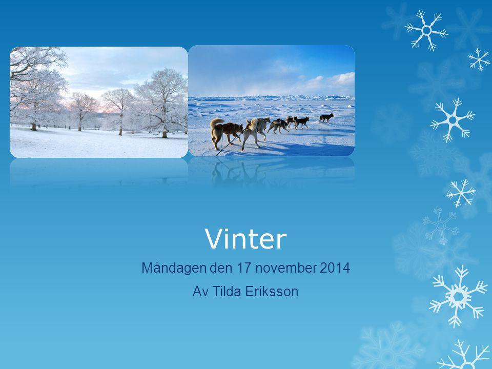 Vinter Måndagen den 17 november 2014 Av Tilda Eriksson