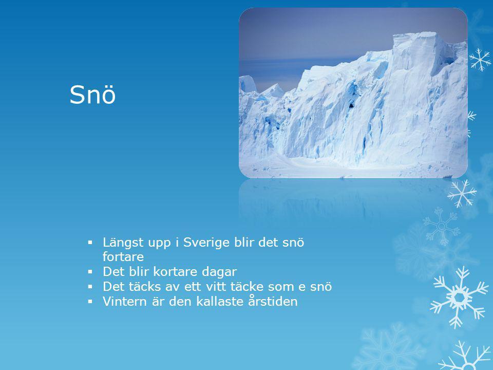 Snö  Längst upp i Sverige blir det snö fortare  Det blir kortare dagar  Det täcks av ett vitt täcke som e snö  Vintern är den kallaste årstiden
