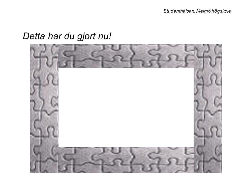 Detta har du gjort nu! Studenthälsan, Malmö högskola