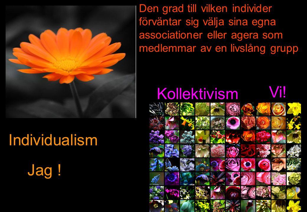 Den grad till vilken individer förväntar sig välja sina egna associationer eller agera som medlemmar av en livslång grupp Individualism Kollektivism Vi.