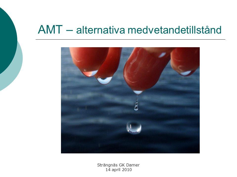 AMT – alternativa medvetandetillstånd Strängnäs GK Damer 14 april 2010