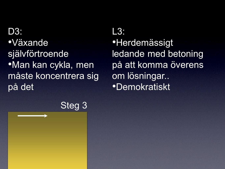 D3: Växande självförtroende Man kan cykla, men måste koncentrera sig på det L3: Herdemässigt ledande med betoning på att komma överens om lösningar..